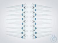 epDualfilter G 0.25-2.5mL PCRSter 240 epDualfilter G 0.25-2.5mL PCRSter 240