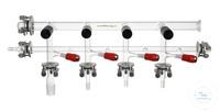N2/Vakuum-Wechselrechen, Bauhöhe: ca. 25 cm, Länge: 50 cm, mit je 4 PTFE-Ventilen...