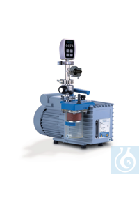 Rotary vane pump package RZ 6  with oil mist filter, butterfly valve VS 16...
