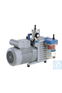 Rotary vane pump package RZ 6 with oil mist filter and 230 V / 50-60 Hz,...