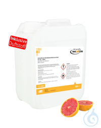 neoLabLine Händedesinfektionsmittel nach WHO Formulierung 1 | 2,5 Liter Kanister
