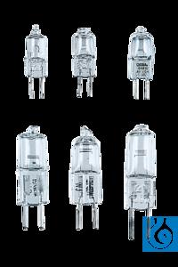 neoLab® Niedervolt-Halogenlampe G4, 6 V/10 W Glühlampen und Halogenlampen,  z.B. für Mikroskope...