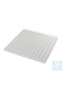 RD 2 Burled mat   RD 2 Burled mat