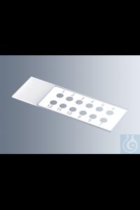 Objektträger mit Reaktionsfeldern