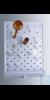 Abtropfgestelle, Polystyrol, stabile Ausführung, mit 72 beliebig einsteckbaren Abtropfstäben von...