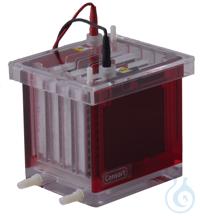 EVS3100-BLOT MINI BLOTTER 10X10 CM    vertikale Elektrophoreseeinheit    -...