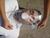 EKASTU dispositif de respiration • DIN 13154 • pour la respiration...