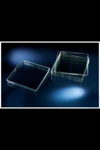 Nunc™ quadratische BioAssay-Schalen Standard Height, Nunclon Delta Treated Square BioAssay Dish...