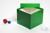 ALPHA Box 130 / 1x1 ohne Facheinteilung, grün, Höhe 130 mm, Karton standard....