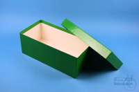 ALPHA Box 100 long2 / 1x1 without divider, green, height 100 mm, fiberboard...