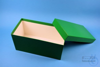 ALPHA Box 130 long2 / 1x1 without divider, green, height 130 mm, fiberboard...