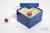 CellBox Maxi / 4x4 Fächer, blau, Höhe 128 mm, Karton standard. CellBox Maxi /...