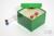 CellBox Maxi / 6x6 Fächer, grün, Höhe 128 mm, Karton standard. CellBox Maxi /...