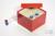 CellBox Maxi / 6x6 Fächer, rot, Höhe 128 mm, Karton standard. CellBox Maxi /...