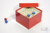 CellBox Maxi / 6x6 Fächer, rot, Höhe 128 mm, Karton spezial. CellBox Maxi /...