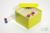 CellBox Maxi / 6x6 Fächer, gelb, Höhe 128 mm, Karton spezial. CellBox Maxi /...