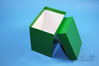CellBox Maxi long / 1x1 without divider, green, height 128 mm, fiberboard...