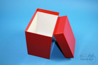 CellBox Maxi long / 1x1 without divider, red, height 128 mm, fiberboard...