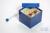 CellBox Mini / 5x5 Fächer, blau, Höhe 128 mm, Karton standard. CellBox Mini /...