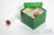 CellBox Mini / 3x3 Fächer, grün, Höhe 128 mm, Karton spezial. CellBox Mini /...