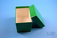CellBox Mini long / 1x1 without divider, green, height 128 mm, fiberboard...