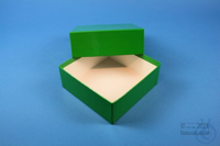 DELTA Box 50 / 1x1 without divider, green, height 50 mm, fiberboard standard....