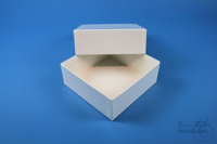 DELTA Box 50 / 1x1 without divider, white, height 50 mm, fiberboard standard....