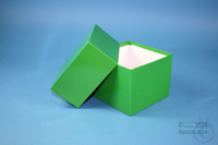 DELTA Box 100 / 1x1 without divider, green, height 100 mm, fiberboard...