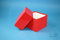 DELTA Box 100 / 1x1 without divider, red, height 100 mm, fiberboard standard....