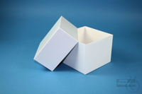 DELTA Box 130 / 1x1 without divider, white, height 130 mm, fiberboard...