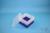 EPPi® Box 105 / 7x7 Fächer, violett, Höhe 105 mm fix, ohne Codierung, PP....