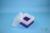 EPPi® Box 128 / 7x7 Fächer, violett, Höhe 128 mm fix, ohne Codierung, PP....