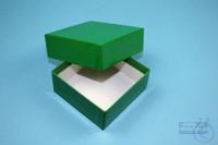 NANU Box 32 / 1x1 without divider, green, height 32 mm, fiberboard standard....
