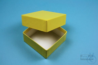 NANU Box 32 / 1x1 without divider, yellow, height 32 mm, fiberboard special....