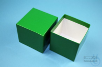 NANU Box 75 / 1x1 without divider, green, height 75 mm, fiberboard special....