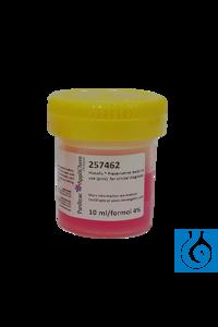 Histofix ® Konservierungsmittel gebrauchsfertig (Pink) für die klin....
