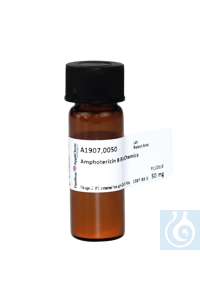 Amphotericin B BioChemica Amphotericin B BioChemicaInhalt: 50 mgPhysikalische...