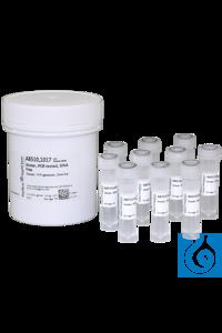 Wasser, PCR getestet, DNA-frei, für die Molekularbiologie, geeignet für die...