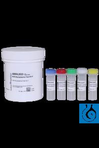 PCR Mycoplasmen - Testkit II PCR Mycoplasmen - Testkit IIInhalt: 25...