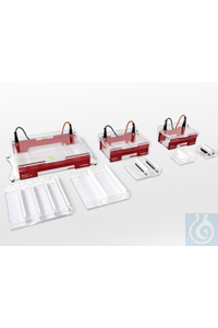 Compact XS + Gel Casting System XS,