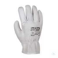 TOP Rindnappaleder-Handschuhe FAHRER 1153 Größe 10 Fahrerhandschuhe,...
