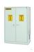 Chemisafe 120 Basic - Sicherheitsschrank zur Aufbewahrung von Chemikalien...