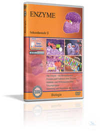 DVD - Enzyme DVD - Enzyme