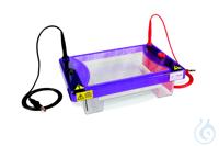 Elektrophoresekammer MultiSUB ChoiceTrio, Tray 15x7,15x10,15x15cm,20er-Kämme MultiSUB™ Choice...