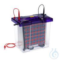 OmniBlot Maxi, 20 x 20cm Blotting-System, inkl. 4 Kassetten Das Maxi-Format...